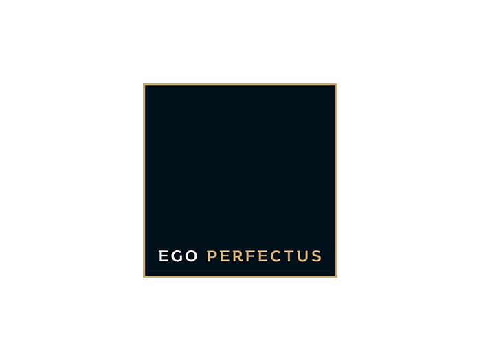 EgoPERFECTUS corporate film