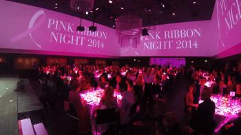 pink-ribbon-night-2014_10