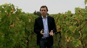 video-prezentacija-vinogradnika-Chateau-Faugeres_11