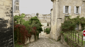 video-prezentacija-vinogradnika-Chateau-Faugeres_15