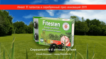 video-reklamas-filmesana_4