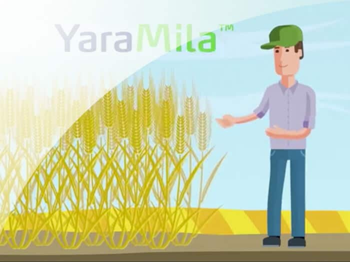 Animation video for YARA company