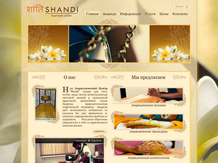 Shandi - Development of website